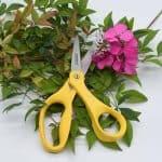Floral Scissors (2)