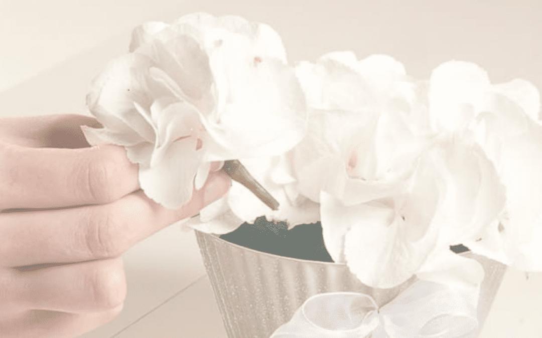 Create A Stunning OASIS® Cupcake Arrangement