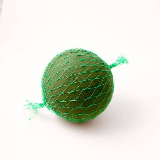 OASIS® Floral Foam Netted Spheres-16cm