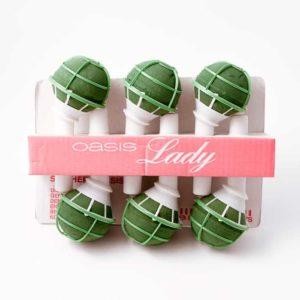 Ladynette II - 6 Pack