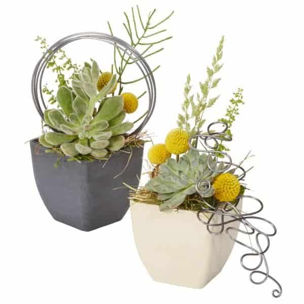 Steel Wire Succulent Flower Arrangement