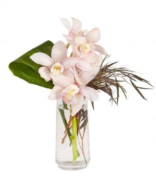 Cymbidium And Agonis Floral Vase