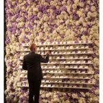 From Music to Floral Magic to Foremost Event Designer for Stars