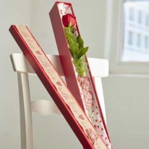 Regency Rose Box (Set of 3)