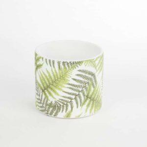 Ceramic Fern Pots