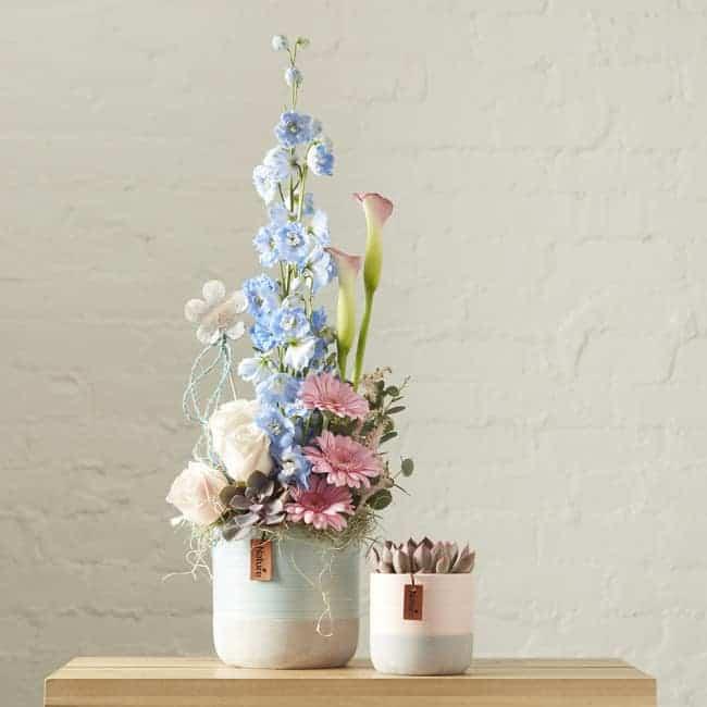 Evie Pink Vase