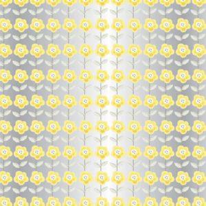 Sunflower Film Roll