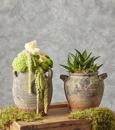 OASIS® Floral Container Range/OASIS® Floral Products