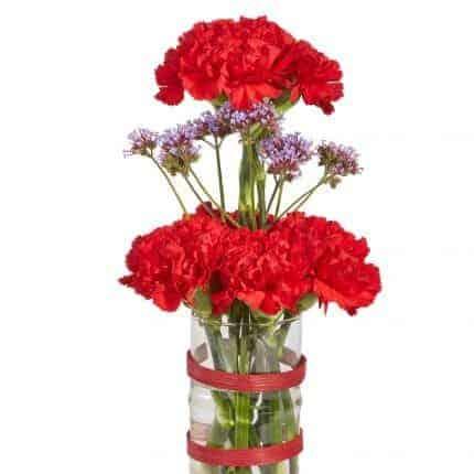 Carnations Floral Vase Arrangement
