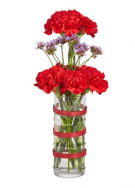 Carnations Floral Vase Arrangement