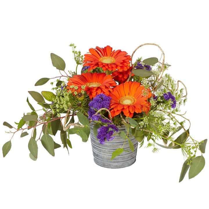 Orange Gerbera Tin Pot Arrangement